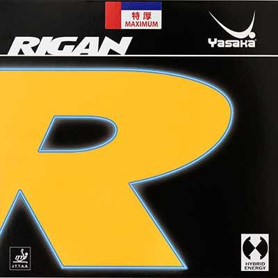 Yasaka Rigan